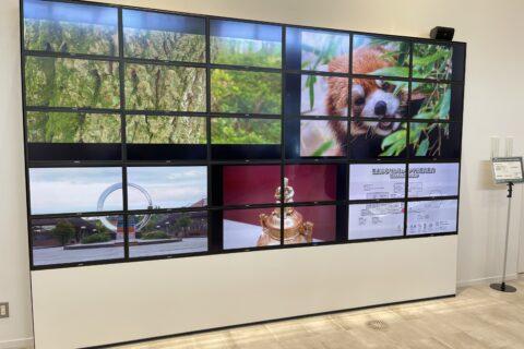 OLED display at Nomi Furusato Museum